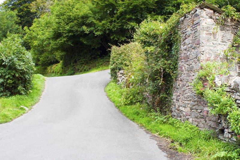 Ruelle anglaise de pays en Devon photographie stock