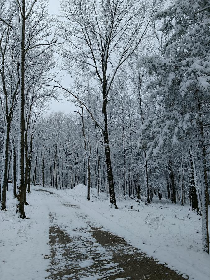 Ruelle d'hiver images libres de droits
