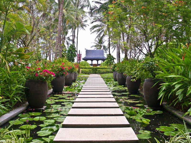 Ruelle dans le jardin, KOH Samui, Thaïlande photos libres de droits