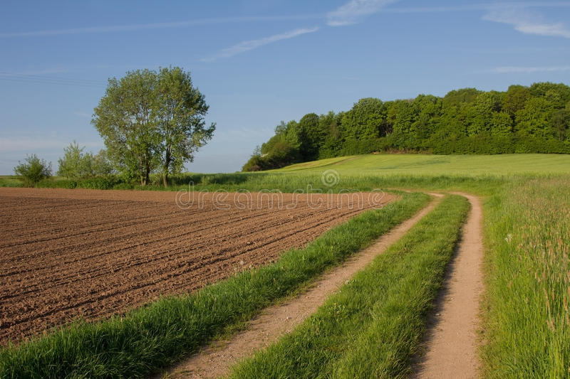 Ruelle de pays par des terres cultivables photo stock