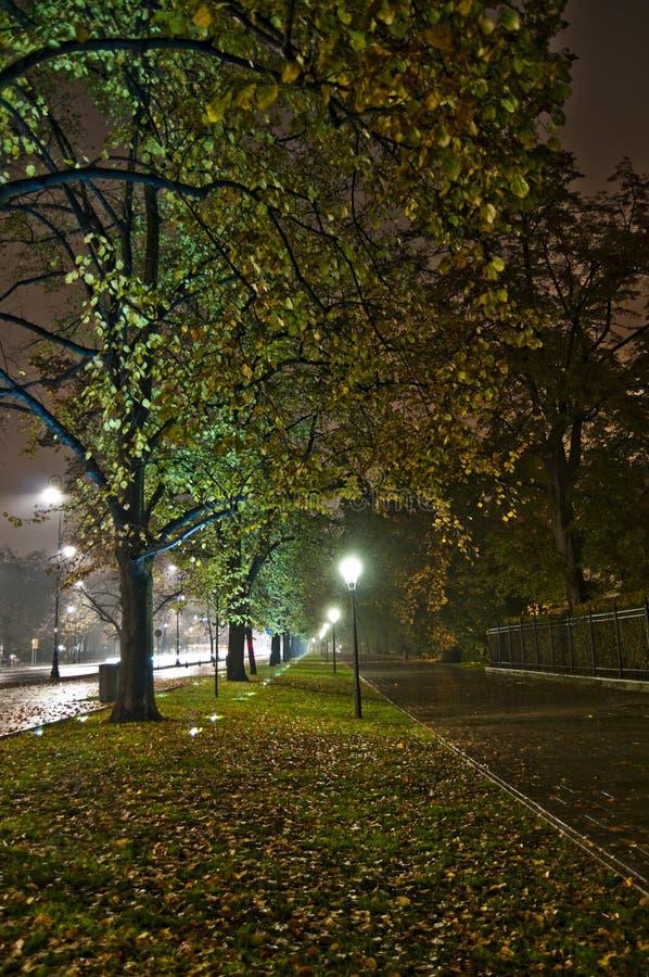 Ruelle de stationnement la nuit photo stock