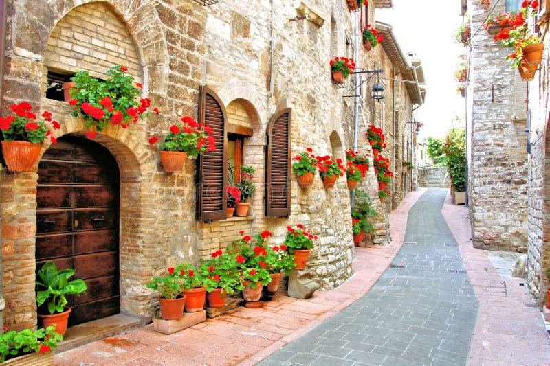 Ruelle italienne remplie par fleur photographie stock libre de droits