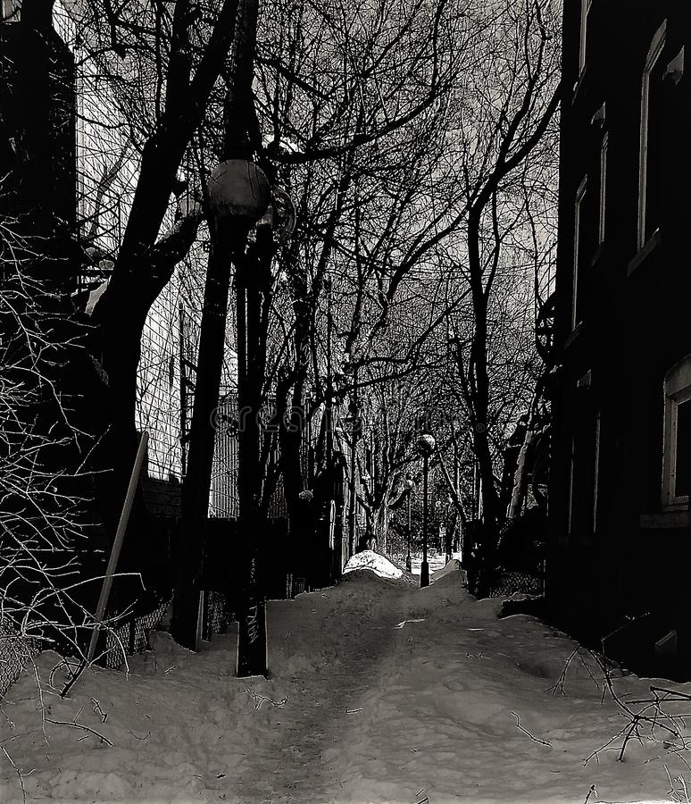 Ruelle Montreal hiver. Ruelle Montreal - Plateau Mont-Royal - Hiver 2018 stock image