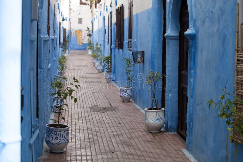 Rues étroites bleues de la Médina d'Asilah au Maroc du nord image stock