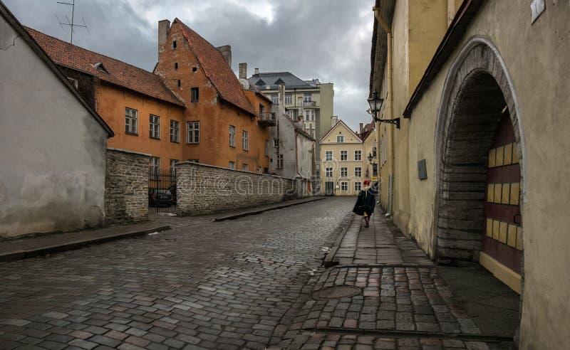 Rues de la vieille ville de Tallinn l'Estonie images libres de droits