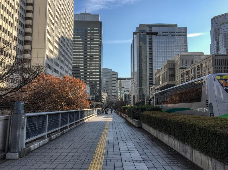 Rues de m?tropole de Tokyo, Japon photographie stock