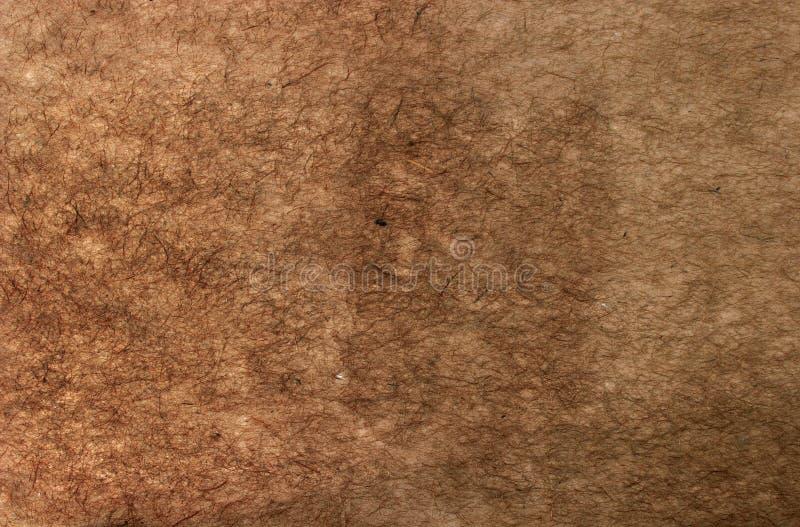 rufsat brunt papper arkivfoto