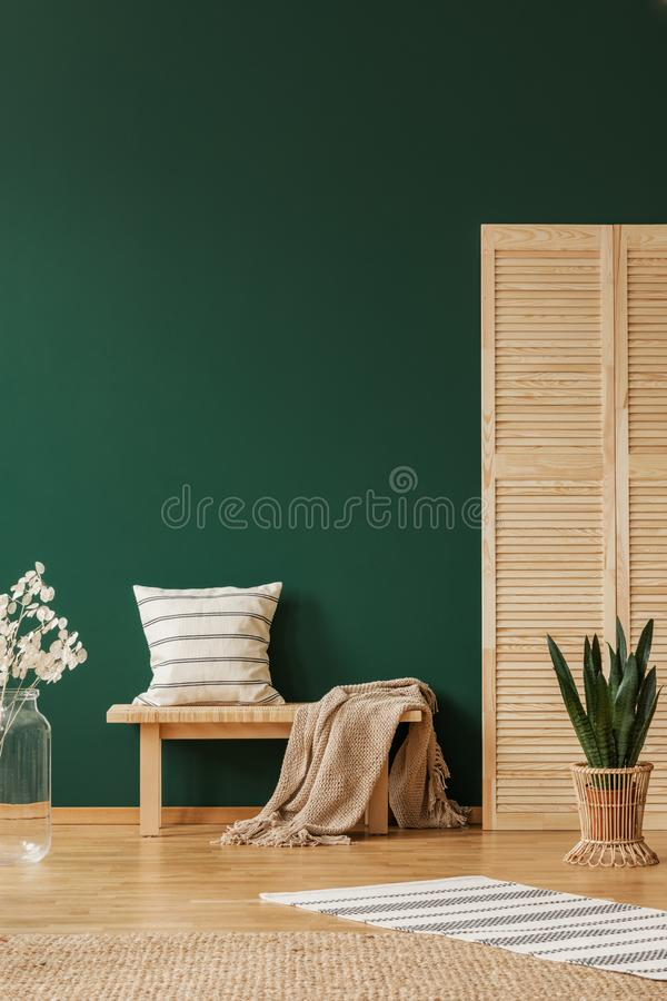 Rug and plant near stool with pillow and blanket in green apartment interior. Real photo. Rug and plant near wooden stool with pillow and blanket in green stock images