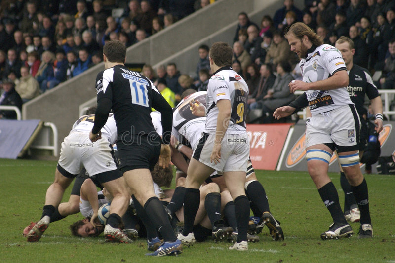 rugby royaltyfri fotografi