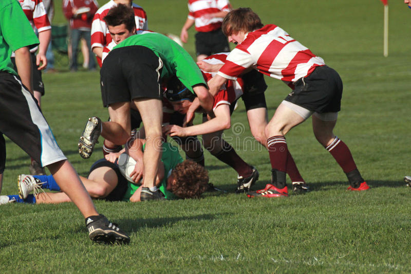 Download Rugby In Action editorial stock image. Image of action - 19493694