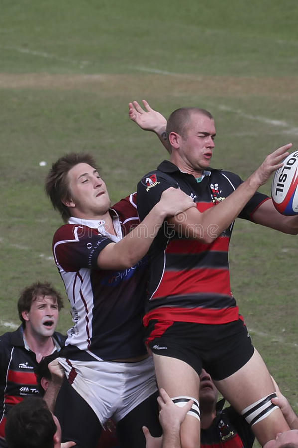 Rugby Action royalty free stock image