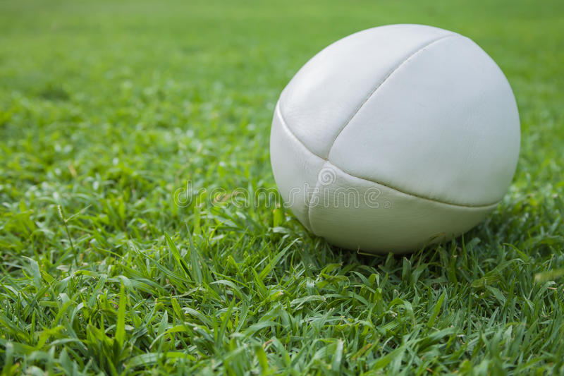 Rugby Ball. On green grass field royalty free stock photography