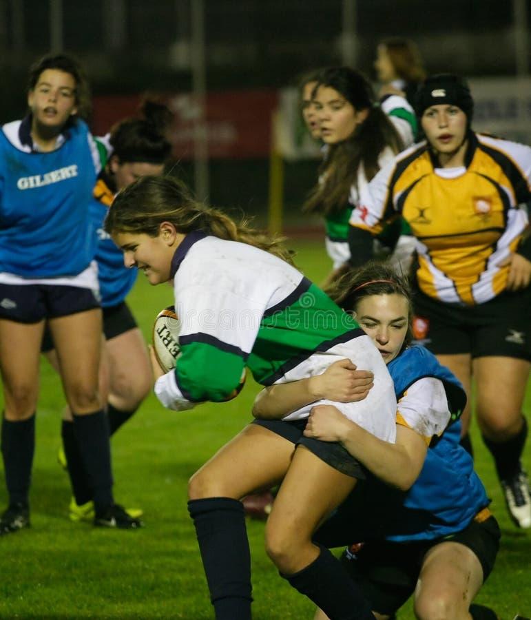 Rugby Clube de Caldas et tigres de Trillium image libre de droits
