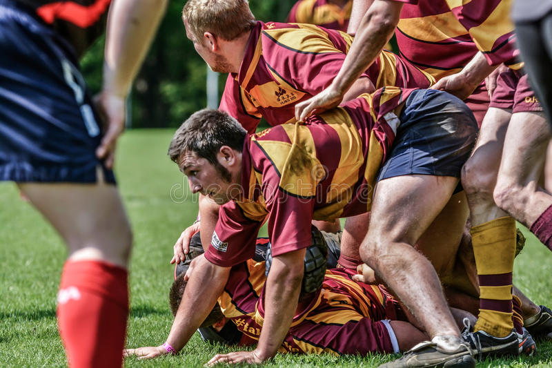 Download Rugby players editorial stock image. Image of challenge - 31787314