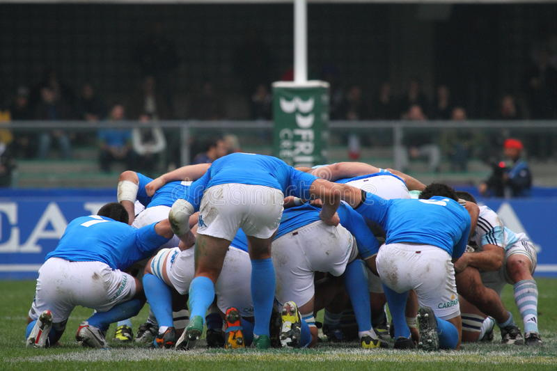 Download Rugby Test Match 2010: Italy Vs Argentina (16-22) Editorial Photography - Image: 17038517