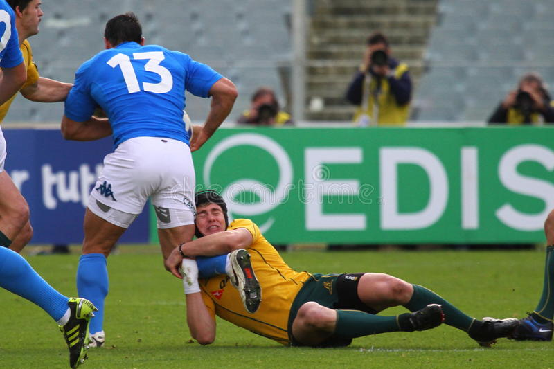 Download Rugby Test Match 2010: Italy Vs Australia Editorial Photo - Image: 17335021