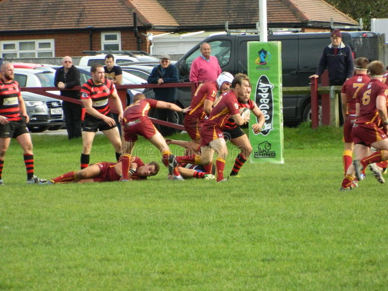 Rugby Union. Scrum half attacking possession running towards the opposition line Yorkshire YRFU royalty free stock images