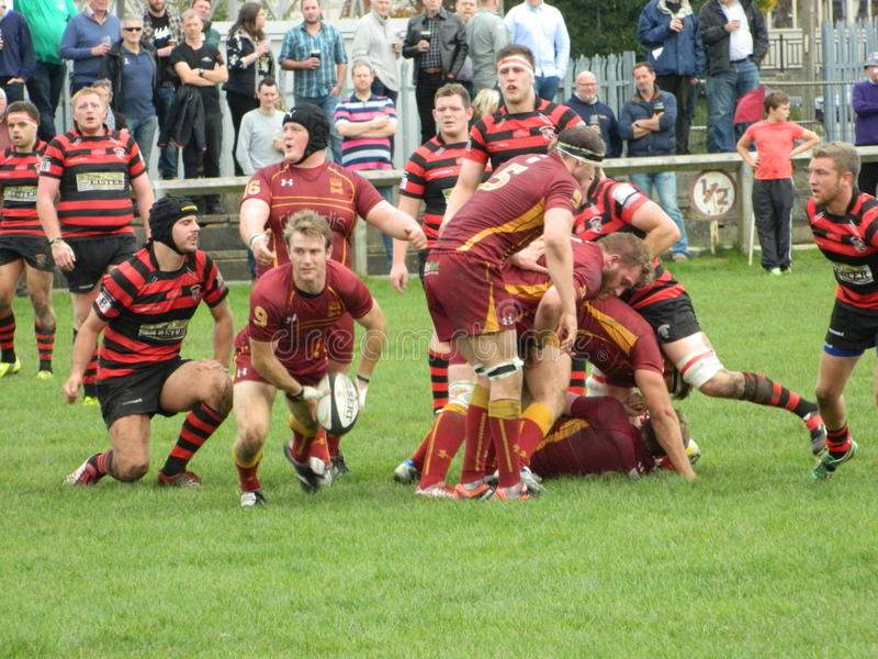 Rugby Union. Scrum half attacking possession running towards winger centre Yorkshire YRFU royalty free stock photography
