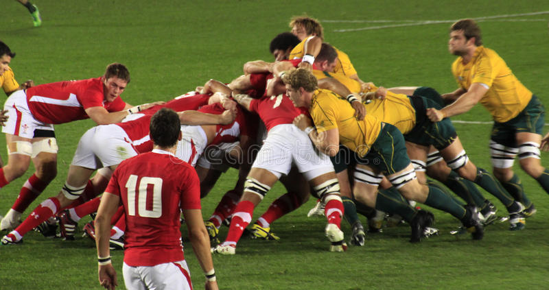 Rugby-Weltcup Australien 2011 gegen Wales lizenzfreies stockfoto