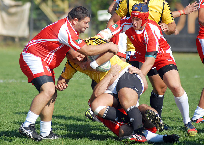 Rugbyspelare slåss för boll i Dinamo Bucharest-CSM Bucharest royaltyfria bilder