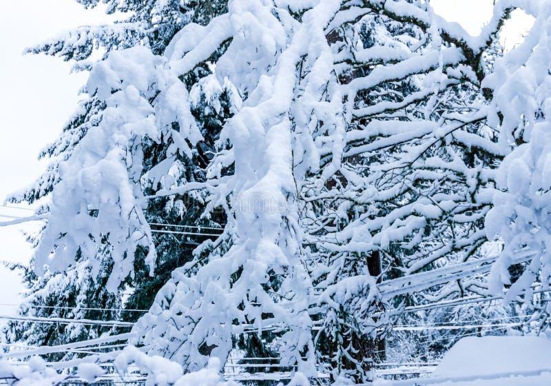 Ruggar av snö gör sammandrag 2 arkivbilder