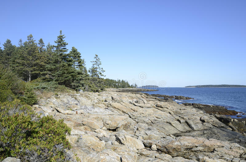 Rugged coast of Maine royalty free stock images