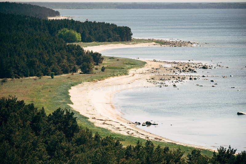 Rugged coastline and coniferous forest of Hiiumaa island stock photo