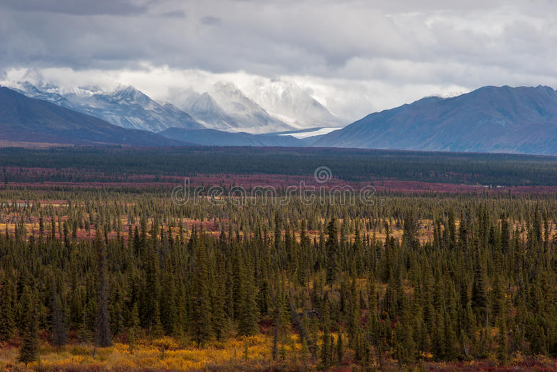 Rugged Fall Landscape stock image