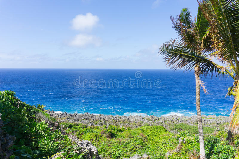 Rugged and jagged coastal feature of coral along Togo Chasm coast with Pacific Ocean beyond in Niue. Natural color layering of green vegetation, grey rugged and stock photo