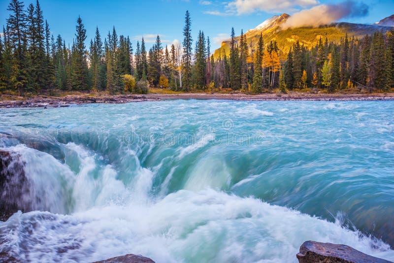Ruggiti verde smeraldo e schiume dell'acqua fotografia stock libera da diritti