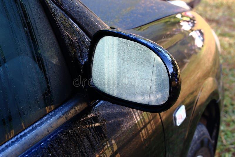 Rugiada di mattina su Wing Mirror dell'automobile nera immagine stock