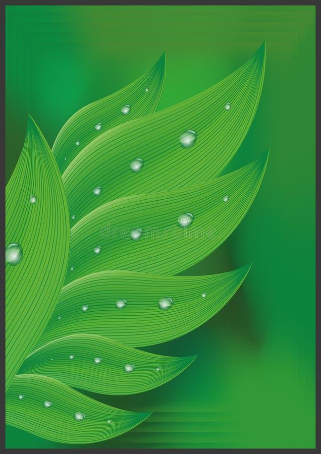 Rugiada su erba verde illustrazione vettoriale