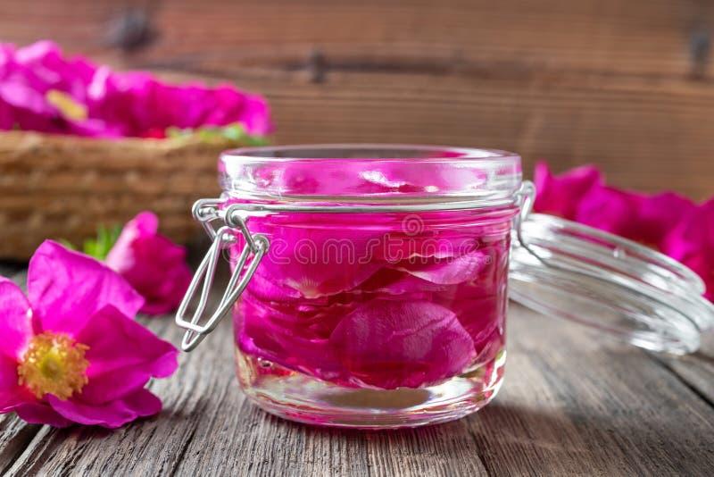 Rugosa玫瑰浸软在桌上的扁桃仁油的花瓣 库存照片