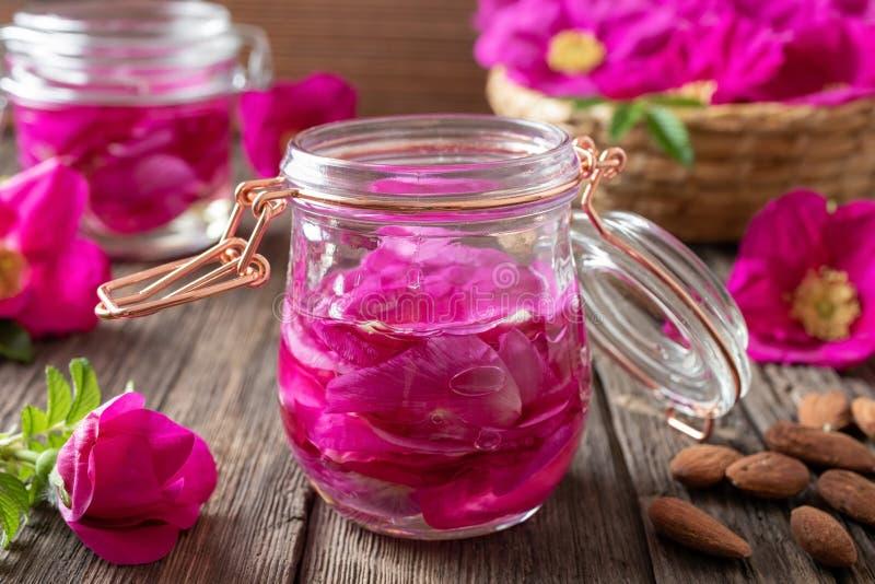 Rugosa nam bloemblaadjes die in amandelolie macereren toe stock afbeeldingen