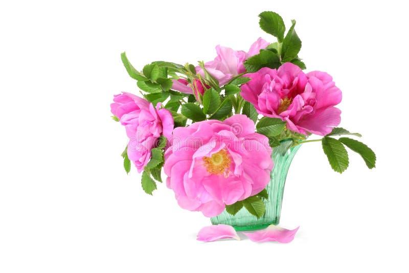 Rugosa Rose Blumenstrauß stockfotos