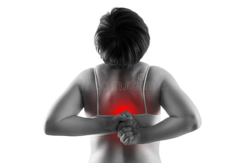 Rugpijn, vrouw die die aan rugpijn lijden op witte achtergrond wordt geïsoleerd stock foto's