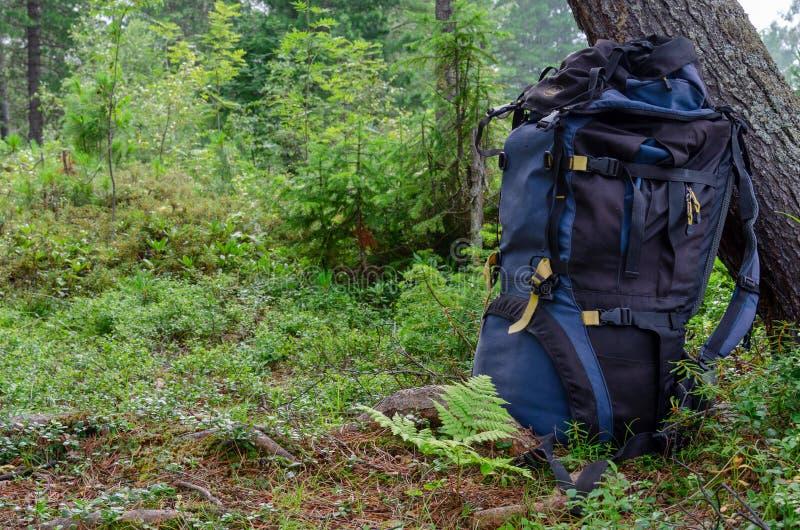 Rugzak openlucht het kamperen materiaal bosaard op achtergrond stock fotografie