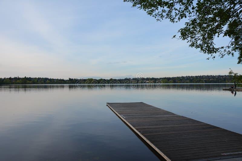 Ruhe auf grünem See lizenzfreie stockbilder
