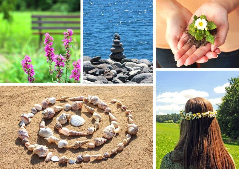 Ruhe-Collage mit verschiedenen Naturszenen stockbilder