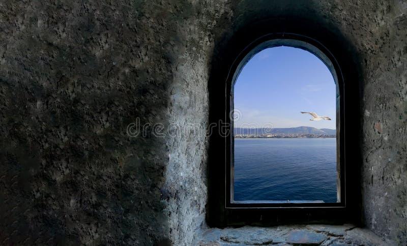 Ruhe im adriatischen Meer: ein Seemöwenfliegen über dem adriatischen Meer lizenzfreies stockfoto