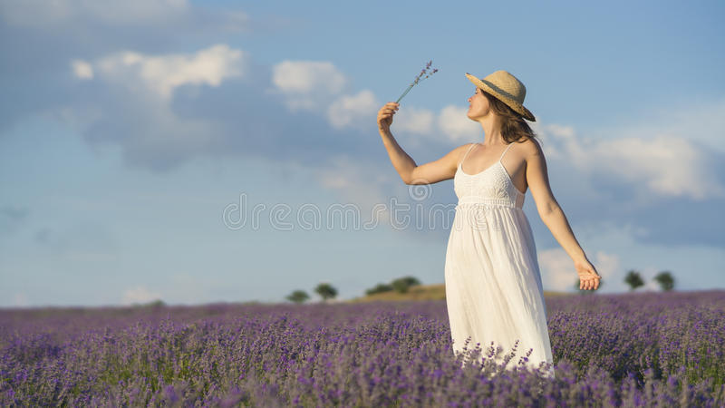 Ruhe und Lavendel stockfotografie