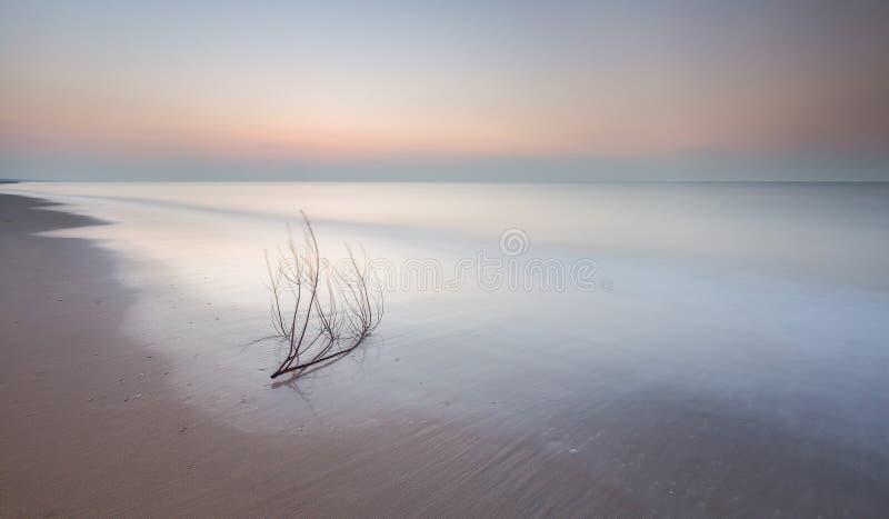 Ruhig, Minimalismussonnenuntergang am Strand stockfotos