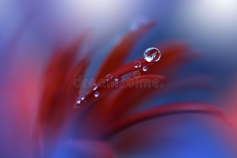 Ruhige abstrakte Nahaufnahmekunstphotographie Druck für Tapete Blumenphantasiedesign stockbild