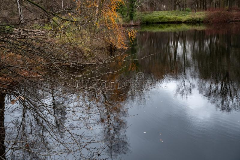 Ruhige Herbstlandschaft mit See in Tiergarten-Park von Berlin Germany Bloße Baumaste auf Vordergrund und undeutlicher Reflexion lizenzfreie stockfotos