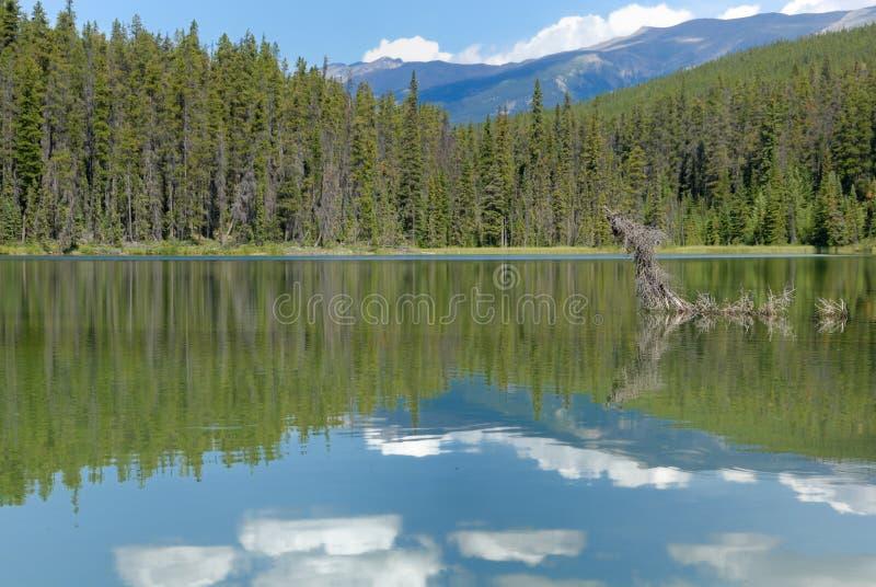 Ruhige Seeansicht in kanadische Rockies stockfoto