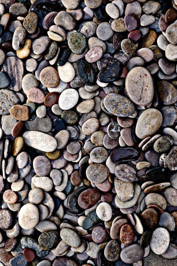 Ruhige Serene Fotograf Of Wet River-Steine lizenzfreies stockfoto