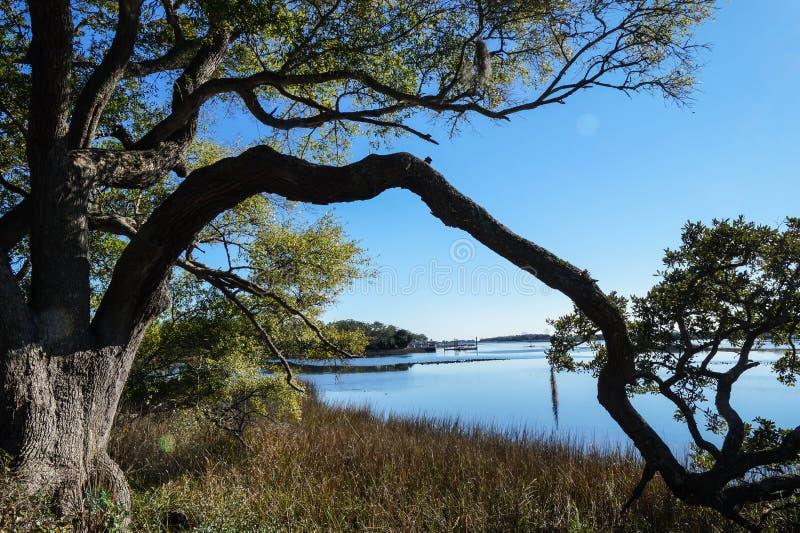 Ruhige Szene Nord-Carolina Coastal-Landes lizenzfreie stockfotografie