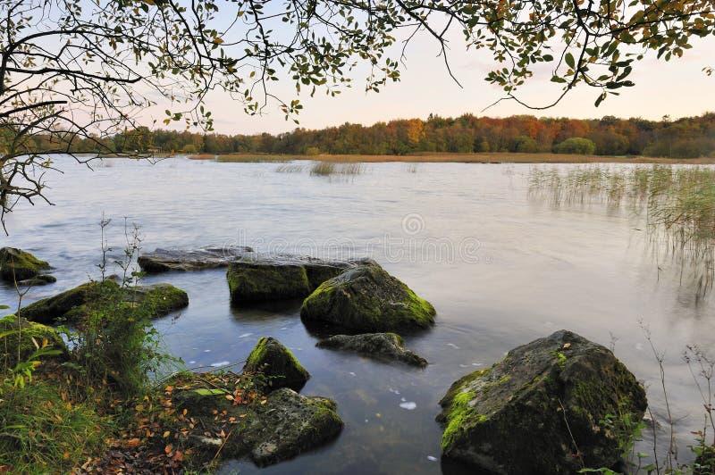 Ruhige Ufer stockbilder