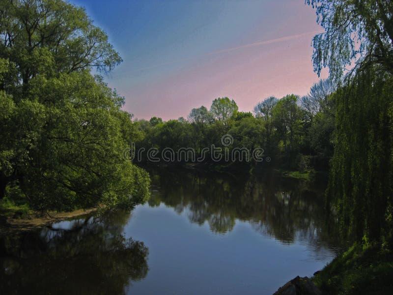 Ruhiger Abend auf dem Teich lizenzfreie stockbilder