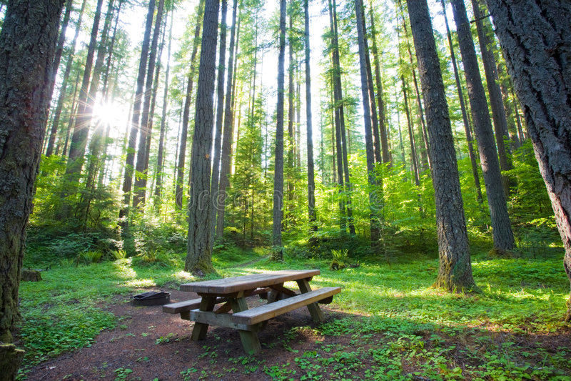Ruhiger Campground- oder Picknickpunkt stockfoto